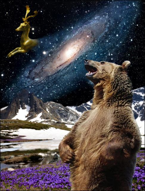The Bear's Son